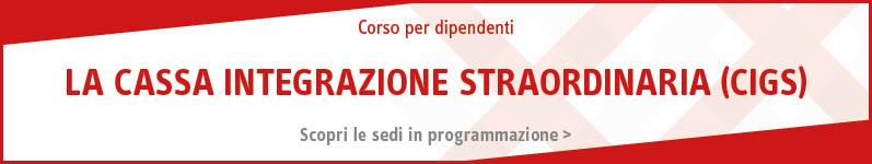 Z_old_Cassa integrazione straordinaria (CIGS)